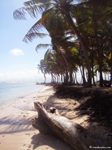 A beach on the San Blas Islands off the coast of Panama.