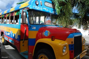 Local-bus-near-the-pier-on-aruba